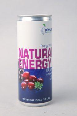 Apfel-Gartenfrüchte 250 ml Dose